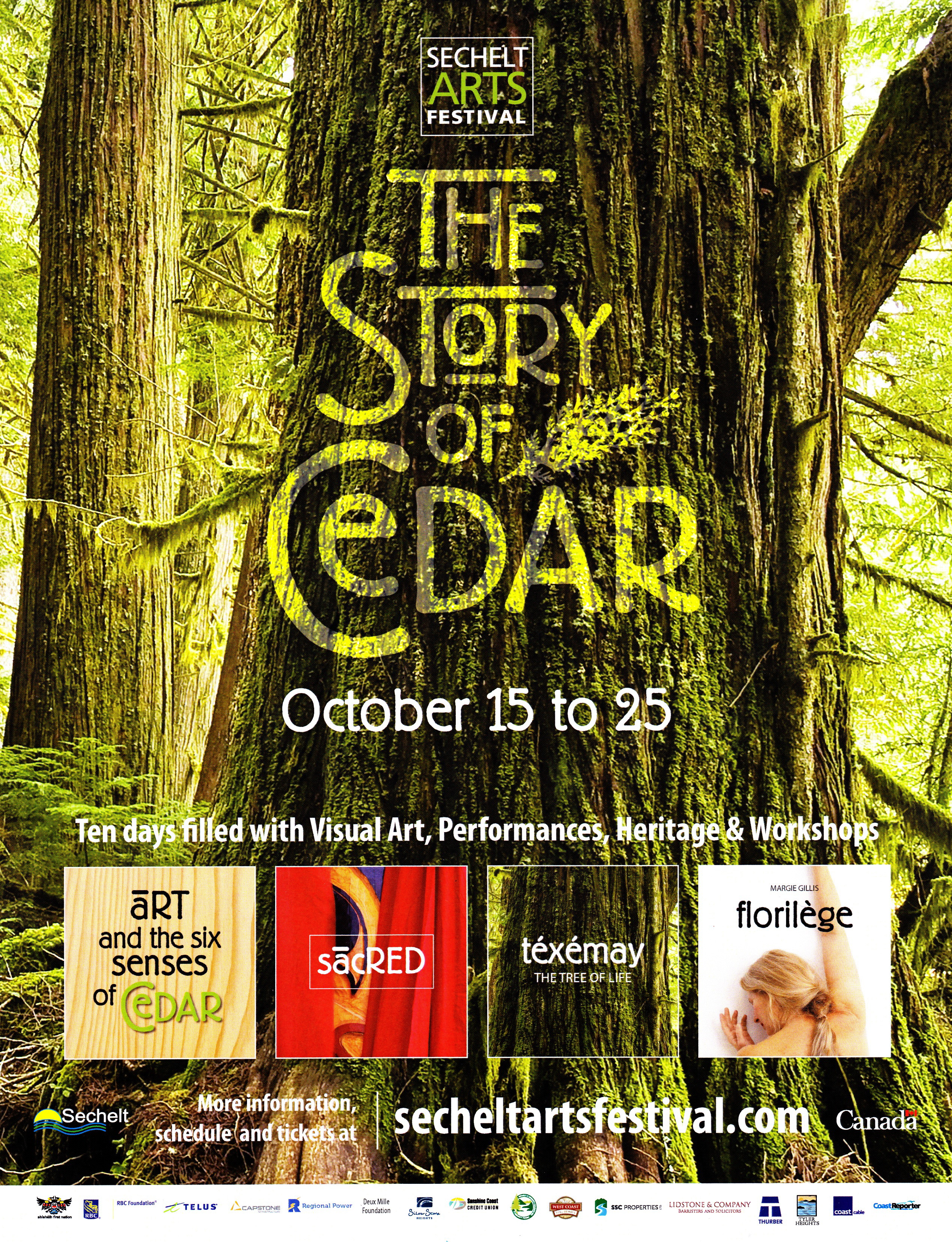 The Story of Cedar 1
