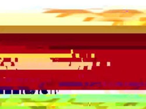 VNM electronic panorama