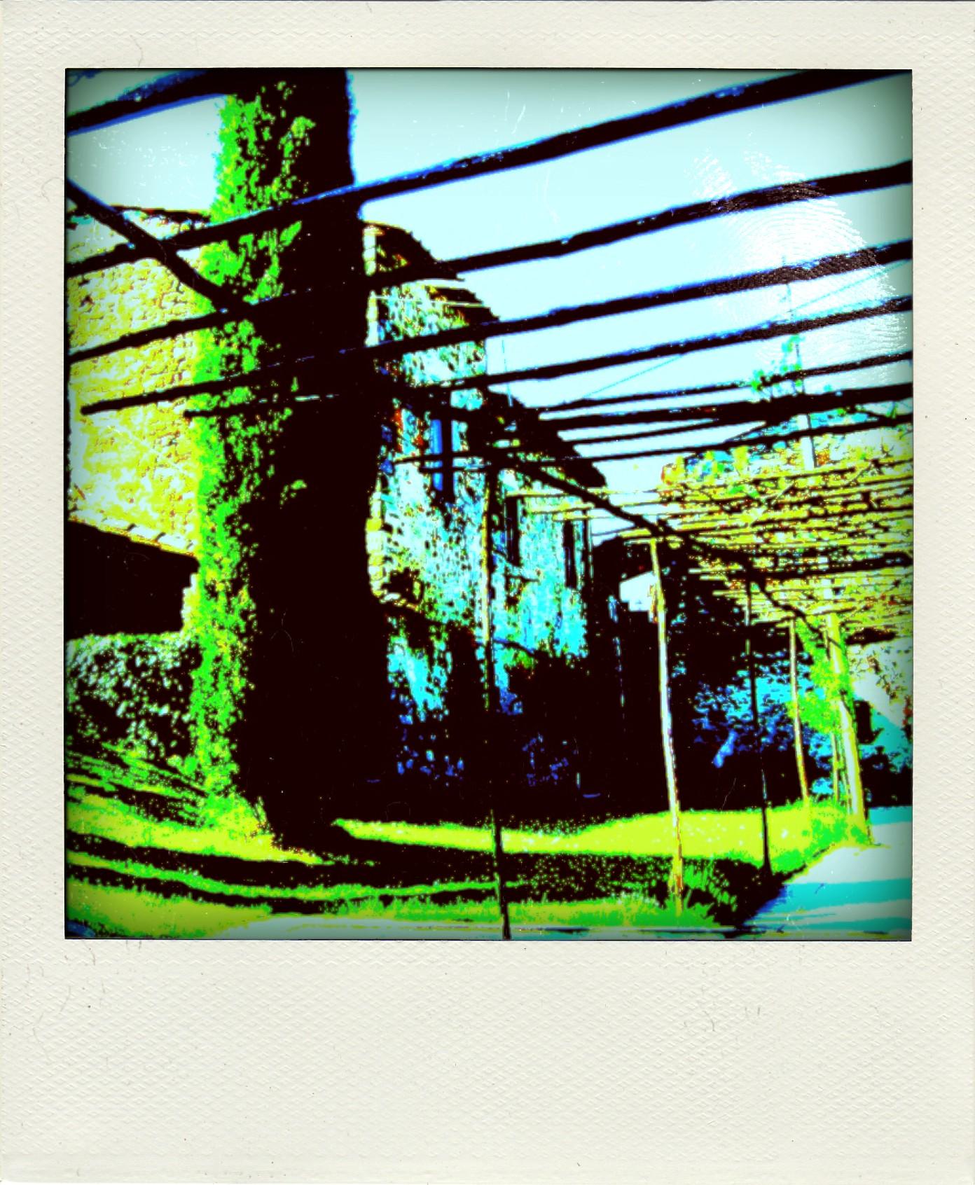 borgo_di_Capannole_cover-pola