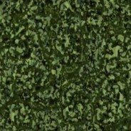 lichenometry rmx