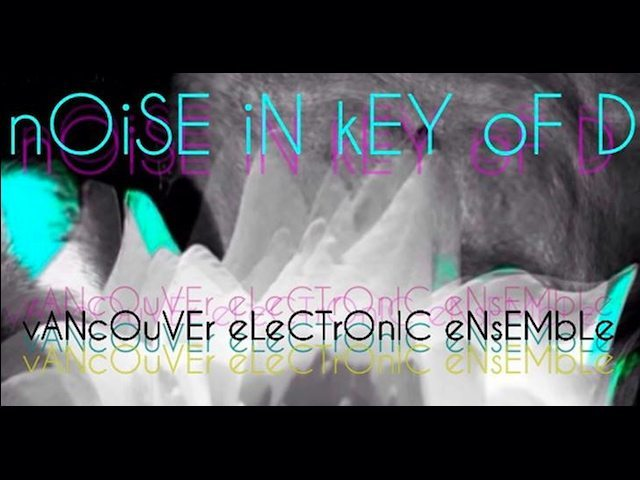 noise in the key of D • live